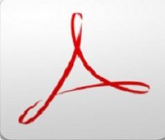 adobe acrobat professional V9.3.4 官方简体中文精简版下载