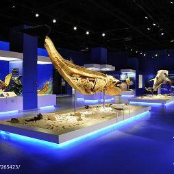 自然生命奥秘博物馆装修效果图