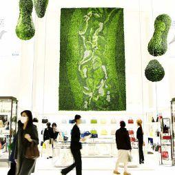 植物藝術2064