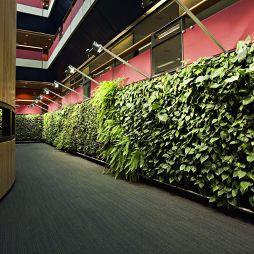 綠色植物墻效果圖集