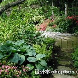 别墅花园景观设计图片大全