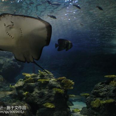 郑州海洋馆_1632603