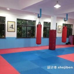 跆拳道地墊效果圖片