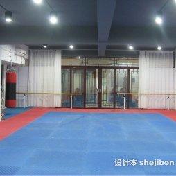 跆拳道地垫效果图图库