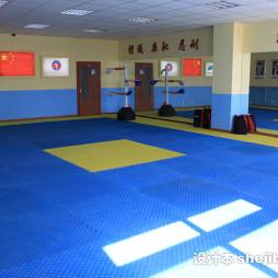 跆拳道地垫效果图欣赏