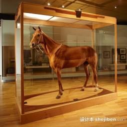 国家博物馆展览效果图集欣赏