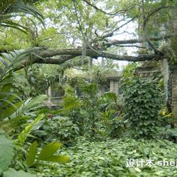 厦门园林植物园效果图