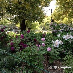 上海辰山植物园效果图图集
