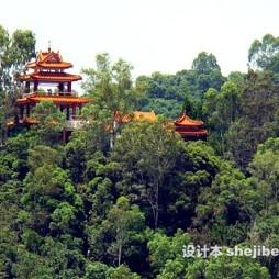 深圳仙湖植物园效果图