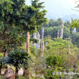 深圳仙湖植物园效果图片