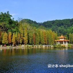 深圳仙湖植物园效果图图片