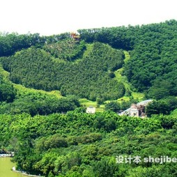 深圳仙湖植物园效果图片大全
