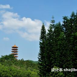 深圳仙湖植物园效果图库欣赏