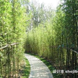 徐州植物园效果图图集