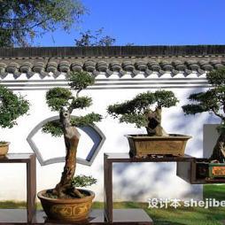 徐州植物园效果图集大全