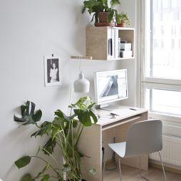 房间花卉盆景图片