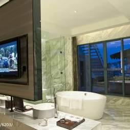 皇家园林酒店套房卫浴装修效果图