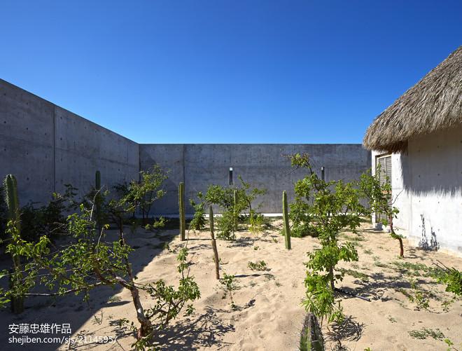 墨西哥 Wabi 工坊_250242