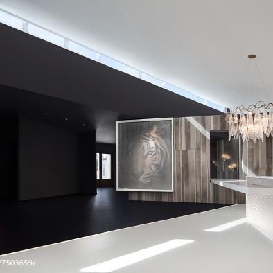 崔树 | 遇见一束光的设计-葡萄牙SERIP灯具展厅_2841528