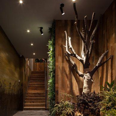 700㎡自然主题咖啡厅·享自然森林之美_3269492