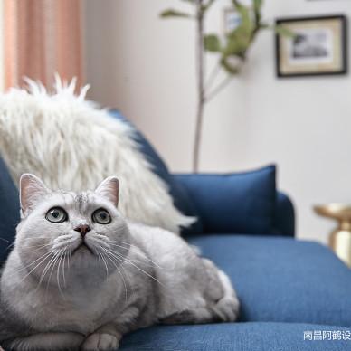 """南昌阿鹤设计 """"美""""的理所应当,他们和猫都喜欢!_3363232"""