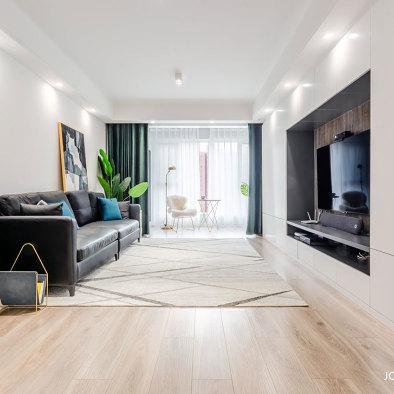 现代简约客厅设计图片