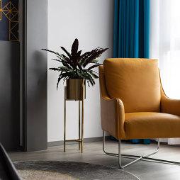 室内植物装饰图片