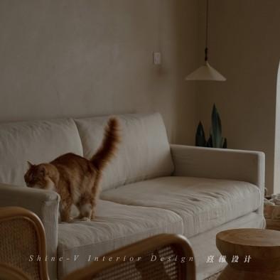 《织巢》,两个人和五只猫的侘寂生活_1604131323_4302934