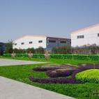 空地、种植草坪副本2