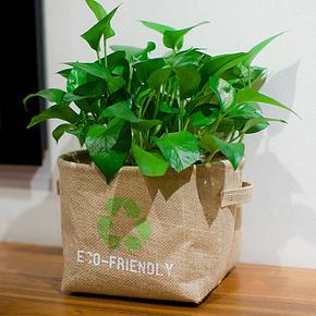 特色!蔬菜储存  收纳袋  背胶工艺 外表印字 带把手环 储物桶