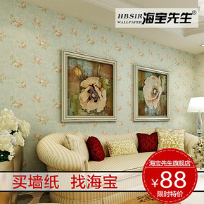 海宝先生 美式田园无纺布环保壁纸  田园墙纸 卧室客厅墙纸HBT-C