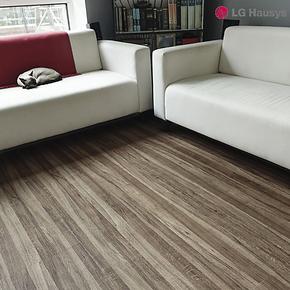PVC地板 LG塑胶地板 石塑地板   加厚耐磨片材  地热 家用 环保