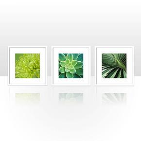 天画现代装饰画 简框画餐厅酒店玄关走廊挂画墙画清新绿色植物