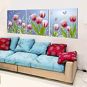 冰晶画 水晶画 无框画 工艺壁画 挂画 室内装饰画 冰雕画b253