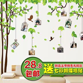 特价包邮 忆之林照片墙背景装饰墙贴 卧室床头客厅沙发墙贴纸树图