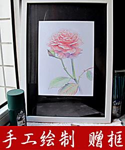 店主手绘 彩铅创作装饰画居家办公墙面挂画A3 独一件《玫瑰C》