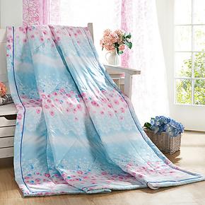 艾do家纺 抗菌空调被 夏被 夏凉被子 单人双人薄棉被芯 被子 特价