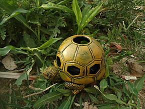 国庆特卖树脂工艺动物烟灰缸有盖创意乌龟烟灰缸酒店用品家居装饰