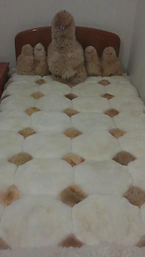 包邮 超厚 羊驼毛毯 100%纯羊驼毛 毛毯 神兽