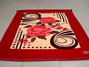 上海凤皇同厂商品柔滑雕花印花双层拉舍尔毛毯加厚七斤1米8包邮