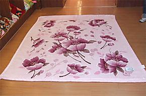 上海凤皇(同厂商品)柔滑雕花+印花双层拉舍尔毛毯加厚七斤1米8