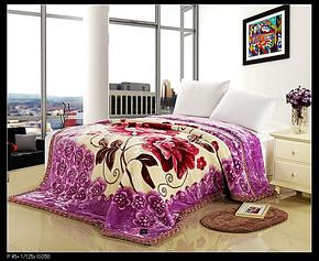 新款仿羊绒毛毯  保暖毯 双层拉舍尔毛毯 老虎豹纹毛毯全场包邮