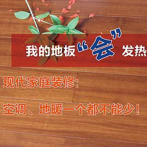 上海热丽自发热碳晶地暖地板 暖芯地板 二翅豆 暖巢行动推荐